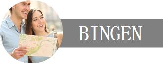 Deine Unternehmen, Dein Urlaub in Bingen Logo